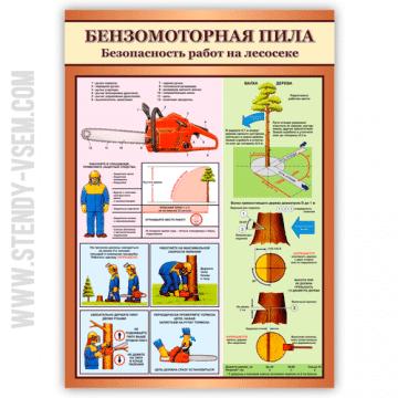 Бензомоторная пила Безопасность работ на лесосеке