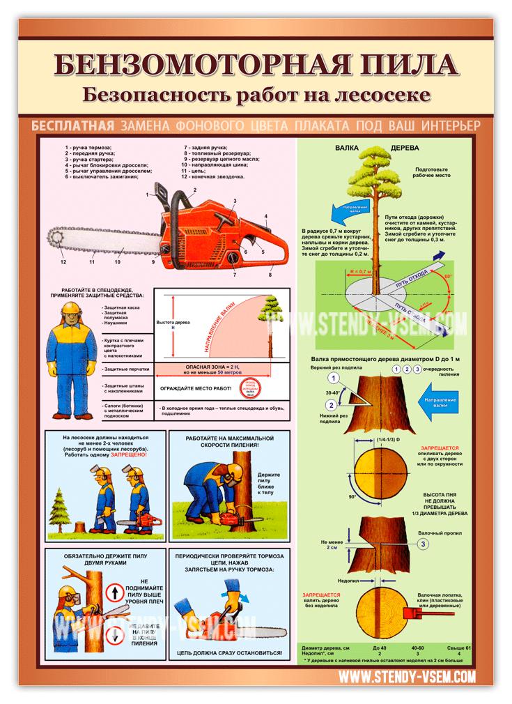 """Первый вариант изготовления плаката """"Бензомоторная пила. Безопасность работ на лесосеке"""" ."""