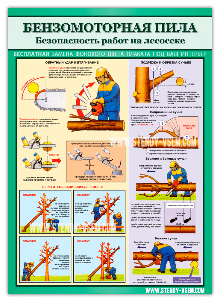 Текст с картинками: правила безопасной работы при использовании бензопилы для валки деревьев и подрезки сучьев, втягивание пилы, формирование первого запила.